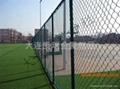 體育場圍網 2
