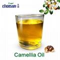 Organic Crude Camellia Oil (Industrial