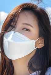 MASK KN95 -F F P 2  FITTER HALF Face Mask