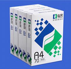 70GSM 75GSM 80GSM 100% Pulp A4 Paper Copier 500 Sheets/Ream - 5 Reams/Box A4 Cop