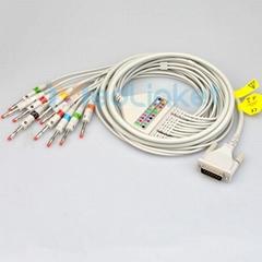 席勒CS6 CS12十二导心电
