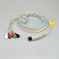 Veterinary 5lead ECG cable with leadwires,snap