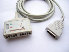 MAC1200 10LD ECG trunk cable