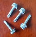不鏽鋼鑽尾螺絲 1
