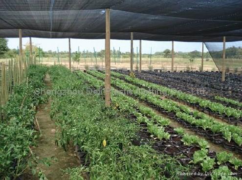 Agricultural net 2