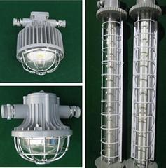 DGS-20/127Y沪东电气矿用隔爆型荧光灯