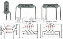 热熔断电阻器