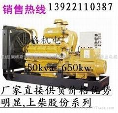 高州上海股份发电机组