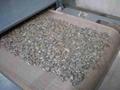 农产品微波加工设备