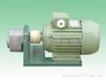 WBZ齒輪油泵臥式裝置
