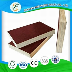 18mm poplar core film faced plywood