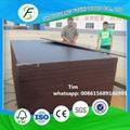 plywood form/clean concrete formwork