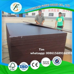 plywood form/clean concr