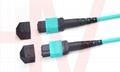 MPO type optic fiber patchcord
