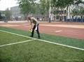 足球場人造草坪 5