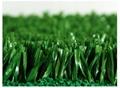 美式足球場人造草坪 3