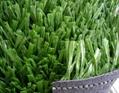 美式足球場人造草坪 4