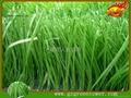 鑽石單絲人造草坪