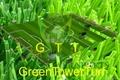 鑽石單絲人造草坪 4