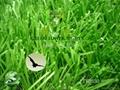 W型單絲人工草坪