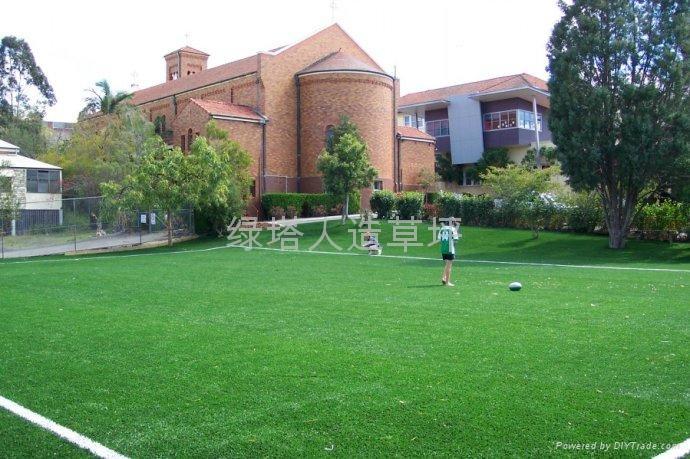 賽爾隆橄欖單絲人造草坪 4
