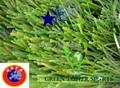 雙麵筋人造草坪
