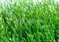 双面筋人造草坪 5