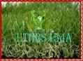 四色景观人造草坪