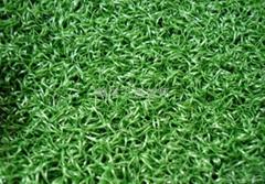Gateball artificial grass