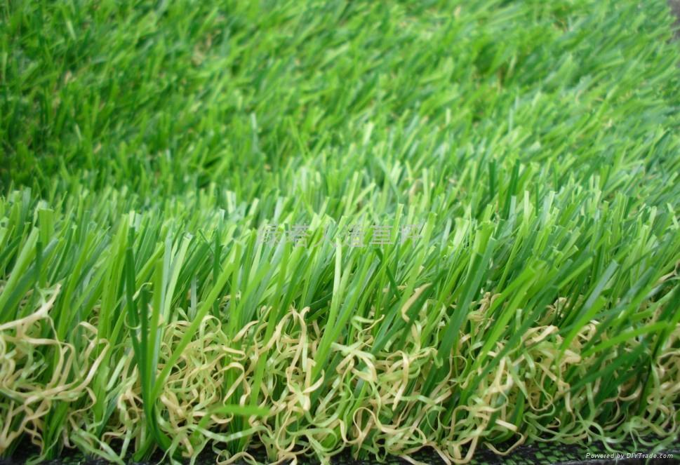 裝飾人工草皮 1