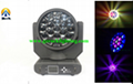 new 19*12w rgbw led bee eye moving head