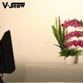 200W COB Fresnel LED Studio Light 11