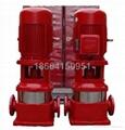 FGL大楼泵消防泵