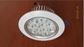 LED天花燈12瓦 2