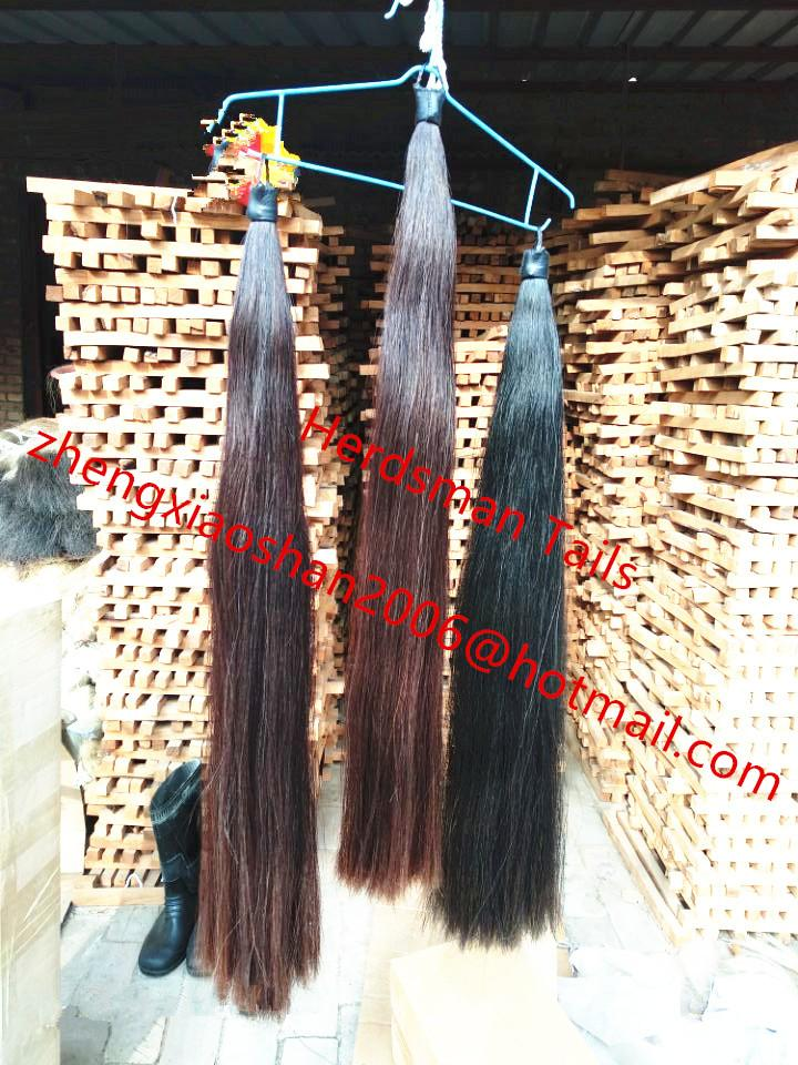 "Hunter 33-36"" long 1 pound blunt cut horse tail extensions for equestrian store 4"