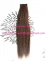 """12-15"""" horse forelock extensions and false horse forelocks made of mane hairs 3"""