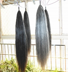 Cloth loop English horse tail extensions and false tails selling in Australia