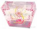 廠家供應優質pvc塑料包裝盒  4