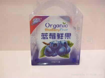 藍莓包裝盒 4