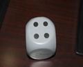 專供EVA骰子 1