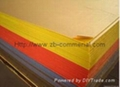 Colorful Acrylic Plate Acrylic Sheet 2