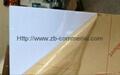 High Glossy PMMA Acrylic Sheet 3