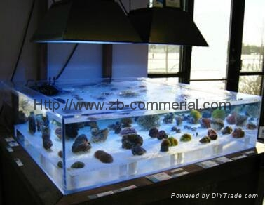 Acrylic Plate for Acquarium/Fish Tank 2