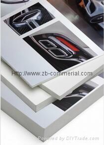 PVC Foam Sheet (free info printing on PE film) 4