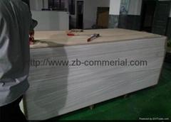 PVC Foam Board PVC Sheet PVC Board (Logo Printable)