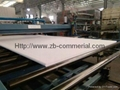 PVC Foam Sheet PVC Panel/Board