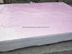 Foamed PVC PVC Foam Board (1220*2440*1-4mm or 2050*3050*1-12mm)