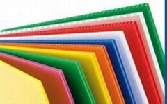 PP Sheet PP Hollow Sheet PP Corrugated Sheet