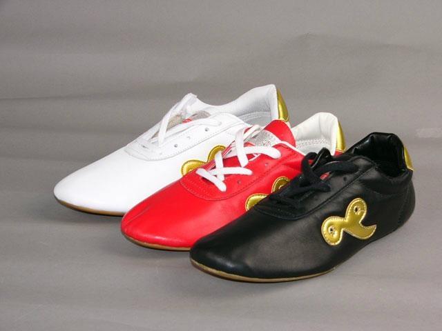 太極鞋子 1