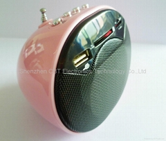FM radio Mini Digital Sound Speaker